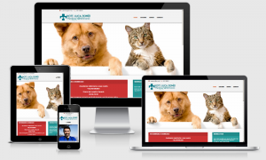 lucatomeiveterinario.it